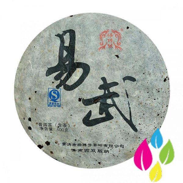 2009 Yang Pin Hao - Yi Wu